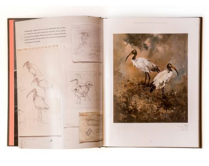John Alexander, Human/Nature book design for the Meadows Museum at the Southern Methodist University.